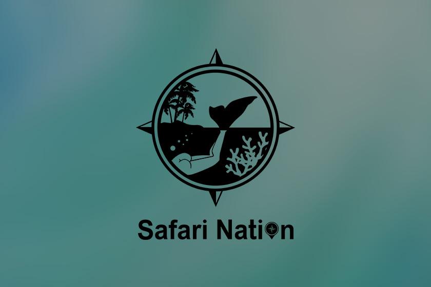 Safari Nation(サファリネーション)様のロゴをデザインさせていただきました!